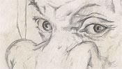 Die Augen von Dürers Mutter