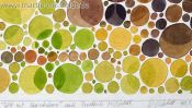 Landschaft Heuschober Aquarell Farbsehtest (Detail 5)