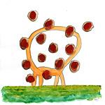 Kopflose Giraffe