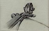 1: Wirbel und Schnecke einer Violine