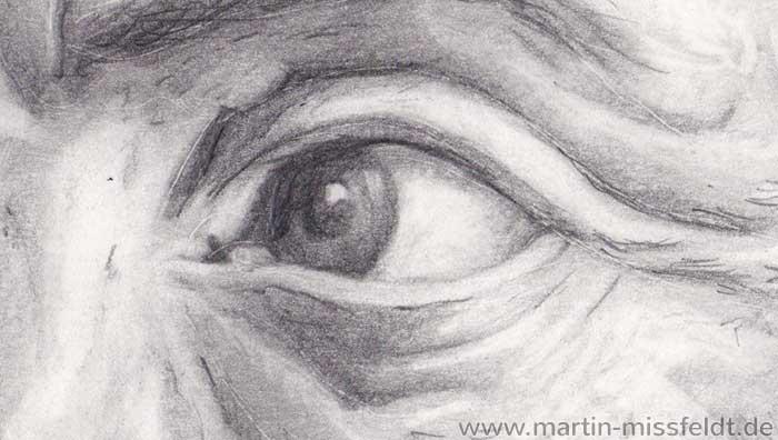 Aristoteles Portrait Zeichnung (Detail 1)