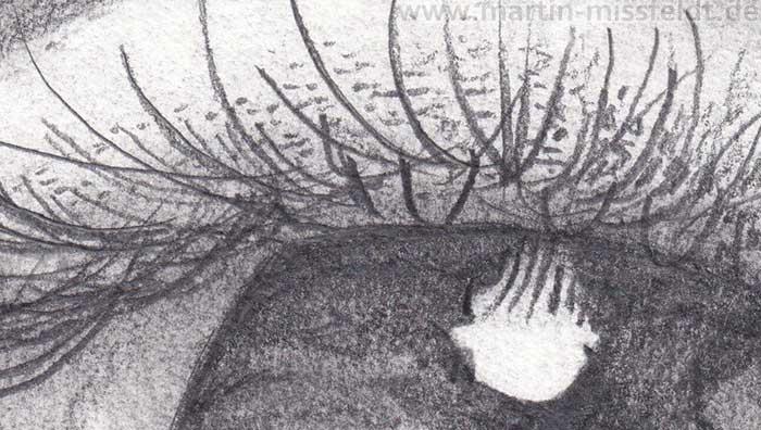 Auge Bleistiftzeichnen Lernen (Detail 1)