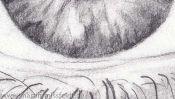 Auge Bleistiftzeichnen Lernen (Detail 5)