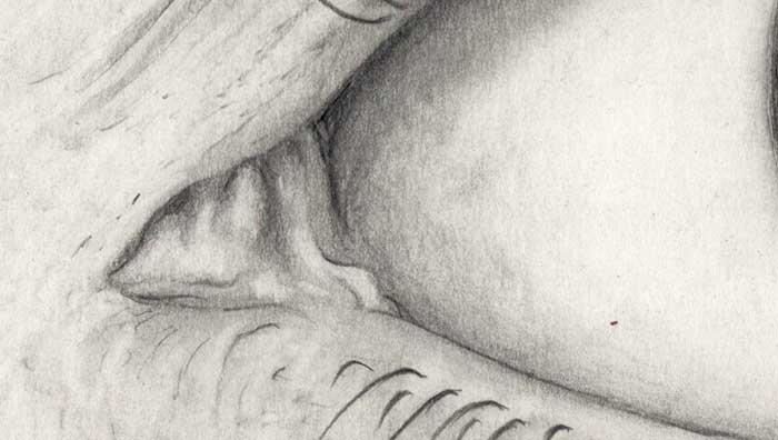 Auge Zeichnung (Detail 1)