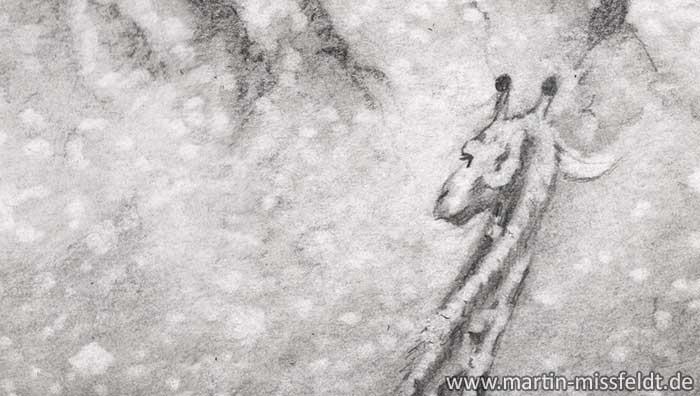 Bleistiftzeichnung Giraffenkopf (Detail 1)