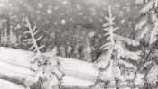 Bleistiftzeichnung Tannen im Schnee (Detail 3)