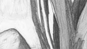 Kräftige Bleistiftlinien (Bäume)