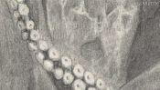 Zeichnung: Tentakel des Kraken (Detail 2)
