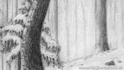 Verschneite Bäume im Wald (Detail 3)