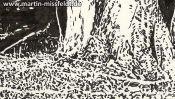 Baum und Waldboden (Brush-Pen Zeichnung) (Detail 3)
