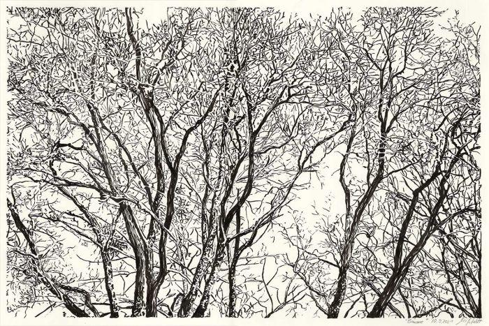Lobetaler Bäume (Brush-Pen Zeichnung)