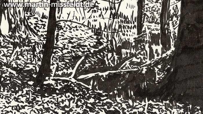 Waldboden mit Baumstamm Zeichnung (Detail 1)
