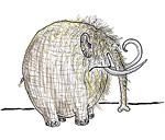 13: Mammut