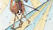 Wüstenschiff Rosinante ist ein Kamel