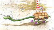 Schildkröte im Panzer