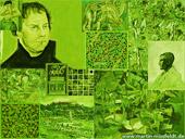 Grünbilder (grüne Bilder)
