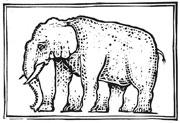 Linolschnitt Elefant