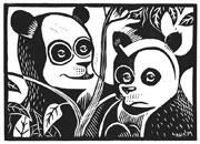 Linolschnitt Panda Bären