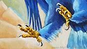 Die Krallen des Adlers (Detail 4)