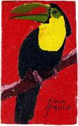 6: Großer Tukan