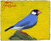 6: Vogel (irgendein Fink)