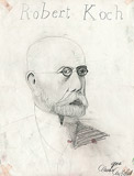 11: Robert Koch