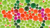 Orange und grüne Punkte