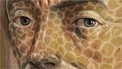 Aristoteles Augen
