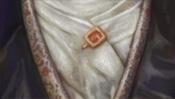 Feines Hemd und Anstecknadel