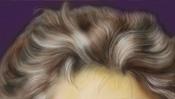 Wilde Haare (Beethoven)