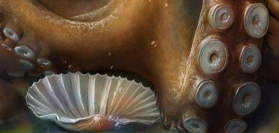 Wiedergeburt der Venus - Muschel im Meer