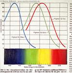 Farbspektrum - sichtbares Licht