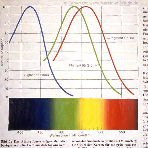Kurven mit Farbspektrum
