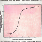 Photolyse des Rhodopsin