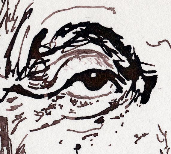 Tusche Zeichnung Auge