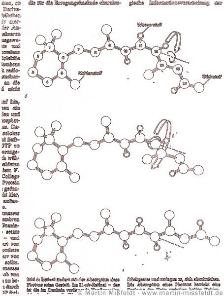 Zeichnung 11-cis-Retinal